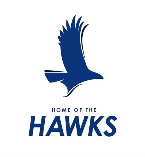 Hillsborough Community College Hawks - Tampa, Florida | MascotDB.com
